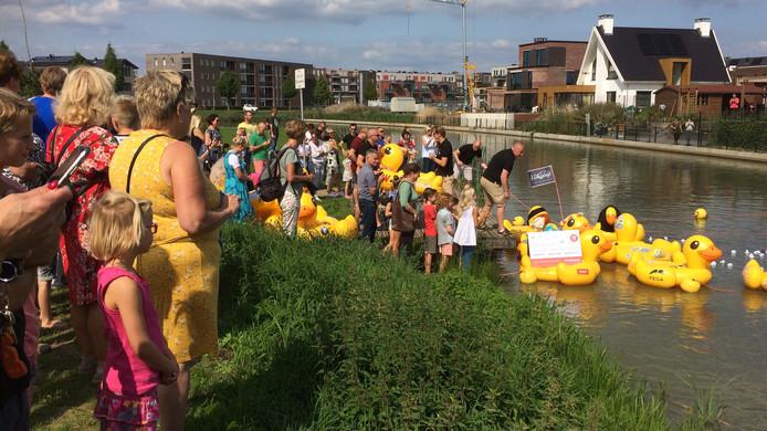 Grote en kleine plastic eenden worden te water gelaten bij het Parkeiland in wijk De Waluwe in Zaltbommel.