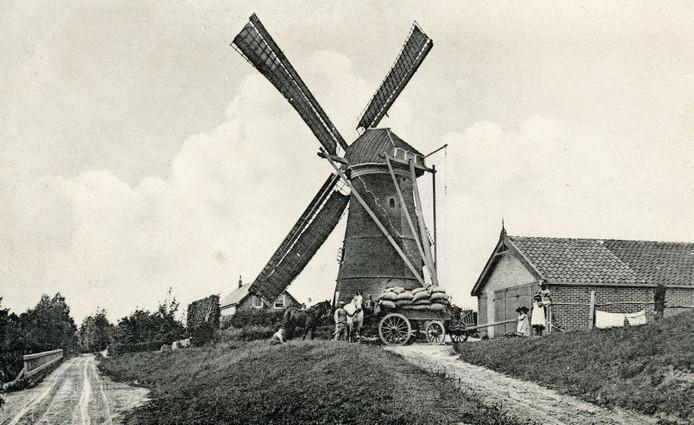 Oostvoorne; De molen van Oostvoorne, ca. 1910