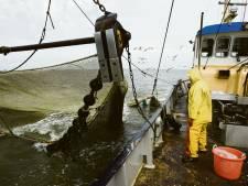 Minister wil Zeeuwse garnalenvissers uit de buurt van de Voordelta