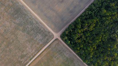 Wereldleiders verbinden zich tot terugdraaiing natuurverlies tegen 2030