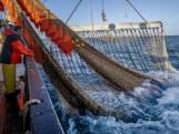 Besluit pulsvisserij uitgesteld