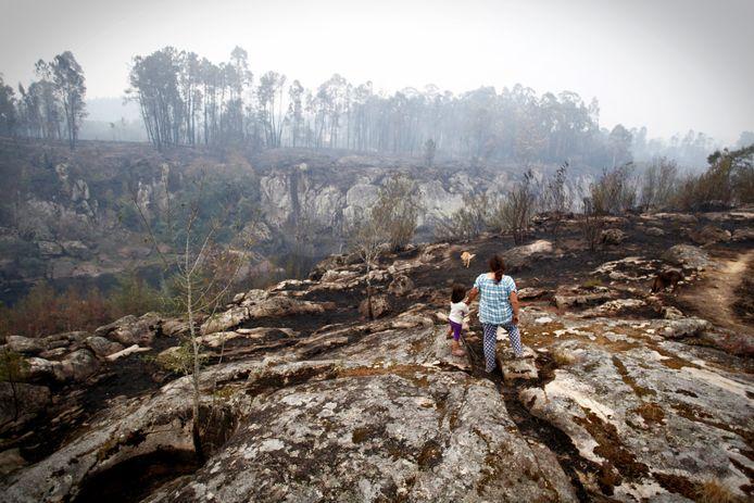 Natuurgebied in Spanje is verwoest door de bosbranden aan de grens van Portugal.