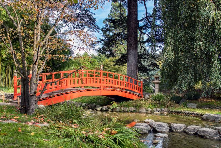 Japanse tuin bij het museum Albert-Kahn. Beeld Alamy