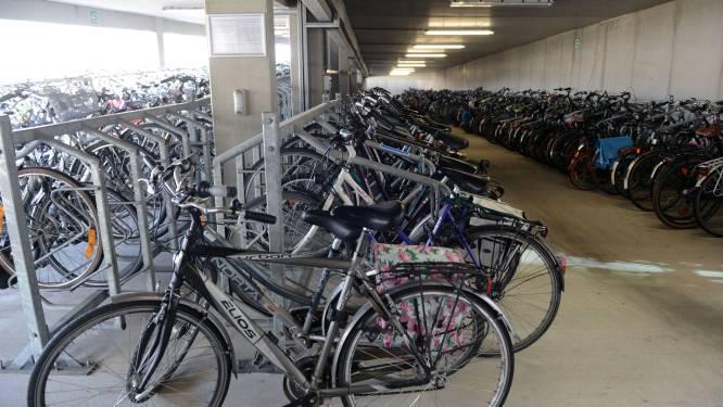 Tot 37 maanden cel voor fietsdieven
