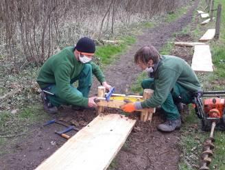 Studenten leggen nieuw knuppelpad aan in Aalmoezeneiebos