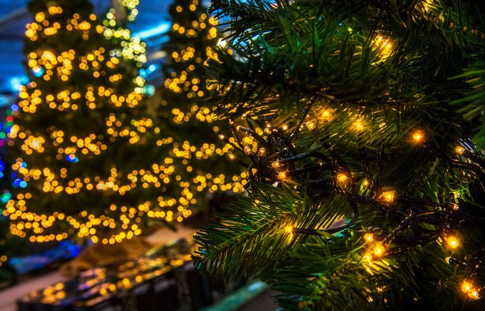 Onbekenden stalen eind vorige week kerstverlichting in Torhout.