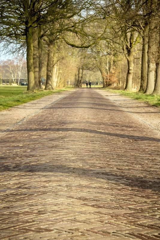 De 'oude Heikant': hobbel de bobbel in het buitengebied van Moergestel.