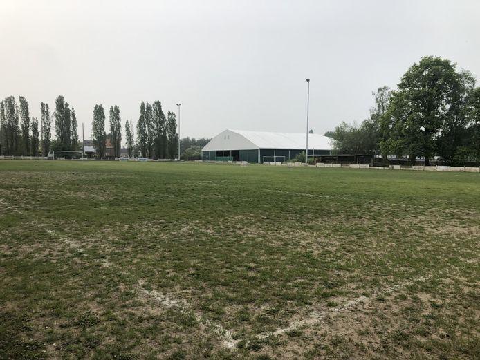 Het B-terrein van KCVV Elewijt wordt binnenkort vervangen door een kunstgrasveld. Voor die werken moeten enkele bomen sneuvelen.