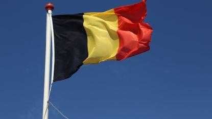 Plots zien Vlamingen België liever dan Walen