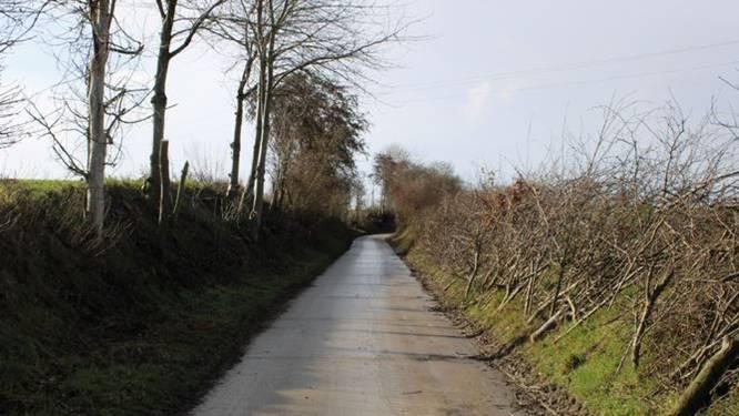 Snoeien en onderhoud maken de holle wegen toegankelijker voor wandelaars