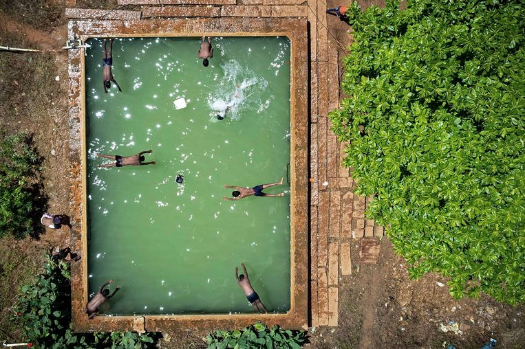 Jongens nemen een frisse duik in een waterreservoir op een boerderij in een buitenwijk van de Indiase stad Bangalore. Beeld AFP
