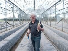Eerste 'witte goud' gestoken bij De Weerd in Wesepe: 'Twee gezinnen krijgen asperges thuis opgediend'