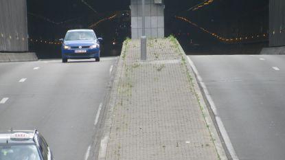 Stroompanne legt verkeer voor tunnels Jubelpark, Reyers en Belliard stil