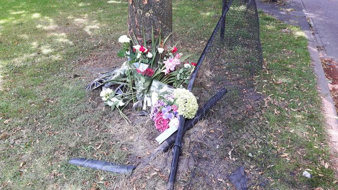 Vrienden en nabestaanden hebben aan de Oisterwijkse Spoorlaan bloemen en kaartjes neergelegd aan de voet van de boom waar het ongeluk gebeurde.