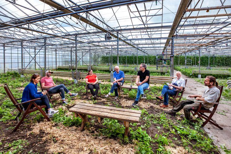 In de kas van de biologisch dynamische kweker David Luijendijk in Roelofarendsveen houden de Caring Farmers een kringgesprek. Beeld Raymond Rutting / de Volkskrant