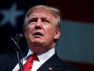 Deze kemel kan Trumps campagne kelderen