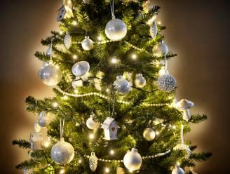 Stad gaat je kerstboom weer adopteren