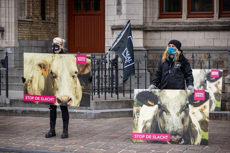 Animal Rights maakte in 2017 undercoverbeelden die wantoestanden in het slachthuis van de groep Verbist blootlegden. Vandaag protesteert de groep voor de rechtbank van Ieper. Beeld BELGA