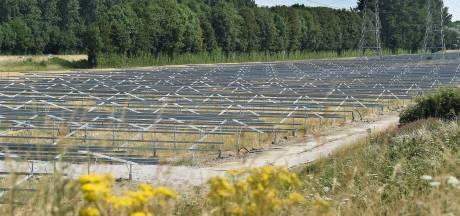 Zevenaar stelt regels op voor zonneparken