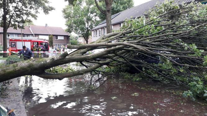 Afkoppelen riolen in Rijen kan tientallen miljoenen kosten, plan in de maak
