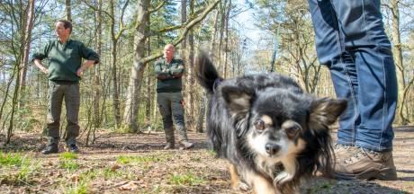Ermelose boswachter: 'Aanlijnplicht beschermt pasgeboren wild, maar ook honden'