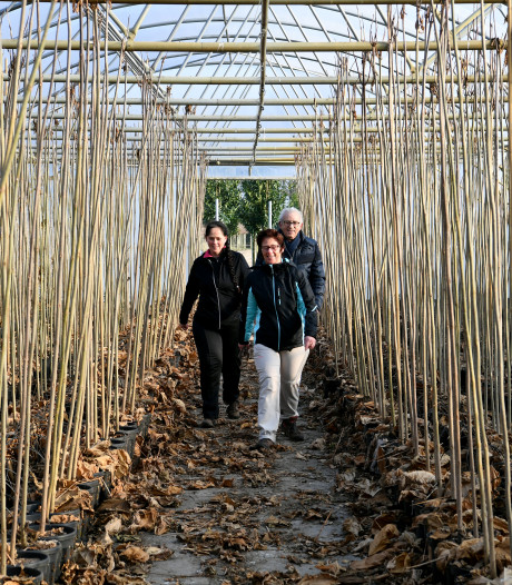 Bijna 1700 kwekerijenlopers zorgen voor tekort aan soep in Zundert