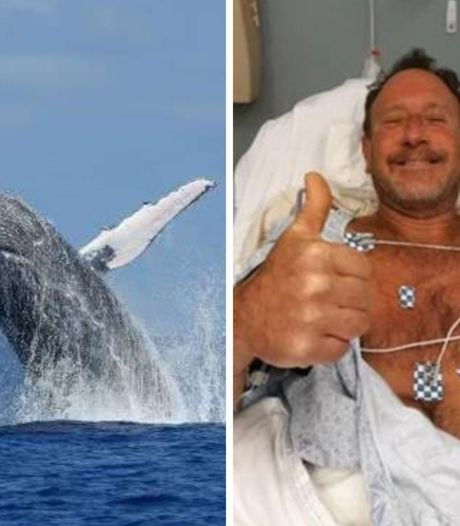 """Un pêcheur sain et sauf après avoir été """"avalé"""" par une baleine"""