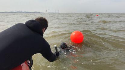 Obussen laten liggen, lijkt veiliger dan alles opruimen: onderzoekers nemen stalen van 'munitiestort' voor kust van Knokke-Heist