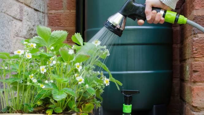 Inwoners van Zoersel kunnen via IGEAN regenwatertonnen aankopen