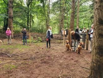 Hoogstraten wil nog meer losloopzones voor honden en zoekt naar 'zwemplaats' voor viervoeters
