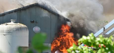 Wake rondom zeer grote stalbrand in Nederweert verplaatst naar stad, ook tegendemonstratie op poten