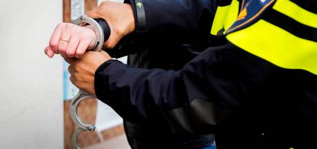 Twee Eindhovenaren opgepakt na stelen van een graszitmaaier