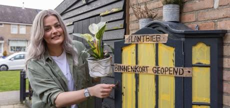 Hasselt krijgt eigen plantenbibilotheek: 'Coronahobby geworden van veel mensen'
