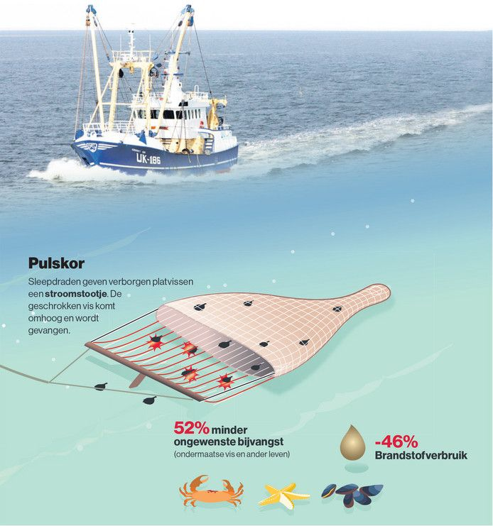AD/Infographics