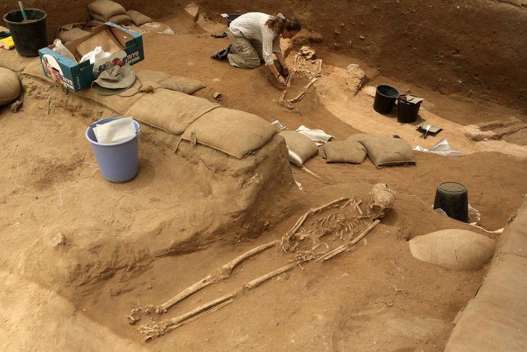 Archeologen onderzoeken menselijke resten in de Israëlische stad Ashkelon om een antwoord te vinden op de vraag waar de Filistijnen oorspronkelijk vandaan kwamen.  Beeld AFP
