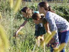 Kijken, herkennen en waarderen bij de jeugdnatuurwacht Liempde