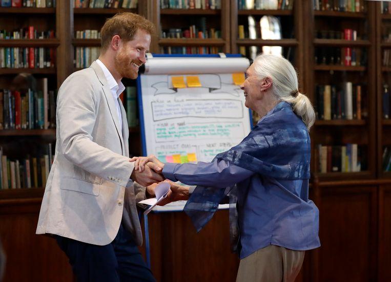 Prins Harry met Jane Goodall. Beeld AP