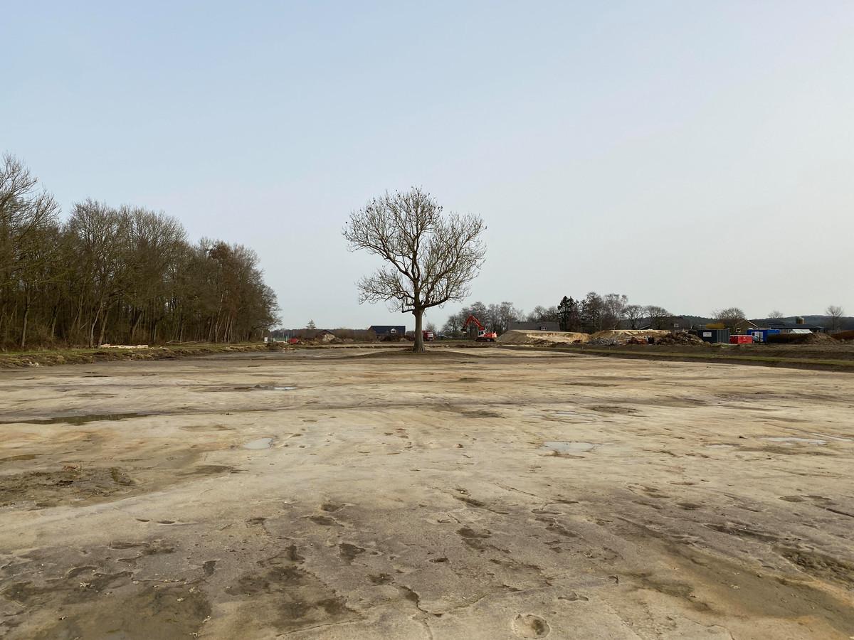 Voormalige landbouwgrond aan de rand  van De Bruuk is afgegraven zodat het zich kan ontwikkelingen tot  natuurterrein