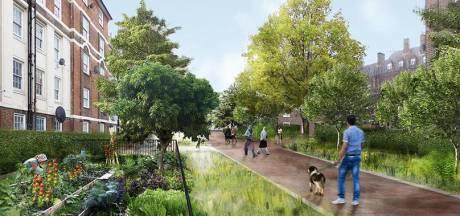 """Met 'Antwerpen breekt uit' investeert de stad  in ontharding: """"We zetten in op vergroenen en op infiltratie van regenwater"""""""