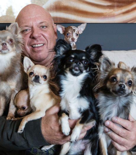 Wie is Peter Gillis, de man van de vakantieparken die overal 'foxwild' van wordt?