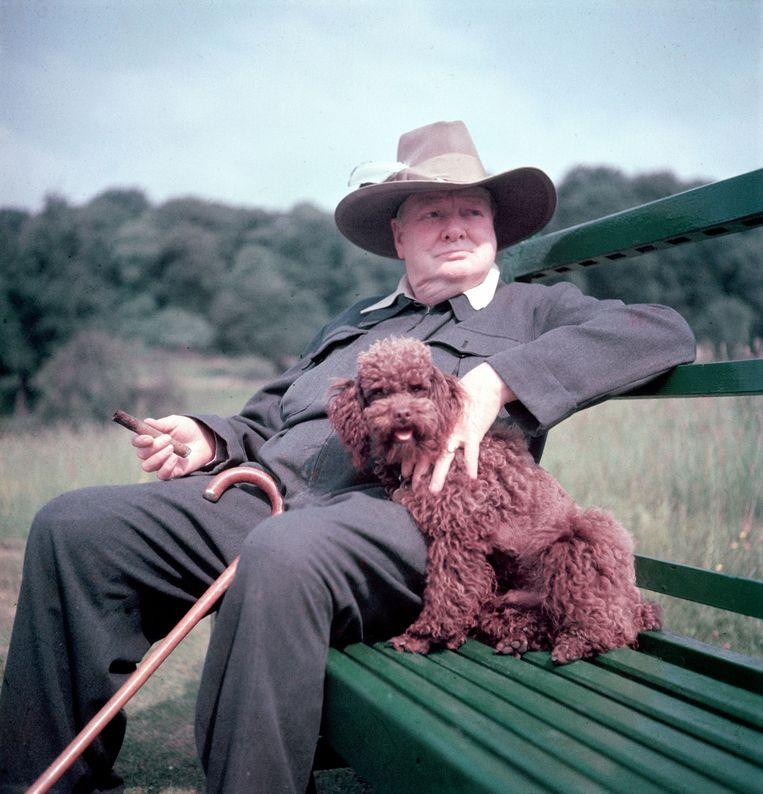 Winston Churchill met hond.  Beeld Mark Kauffman/The LIFE Picture Collection/Getty