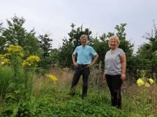 Voedselbank mag piepers telen op grond gemeente in Groesbeek
