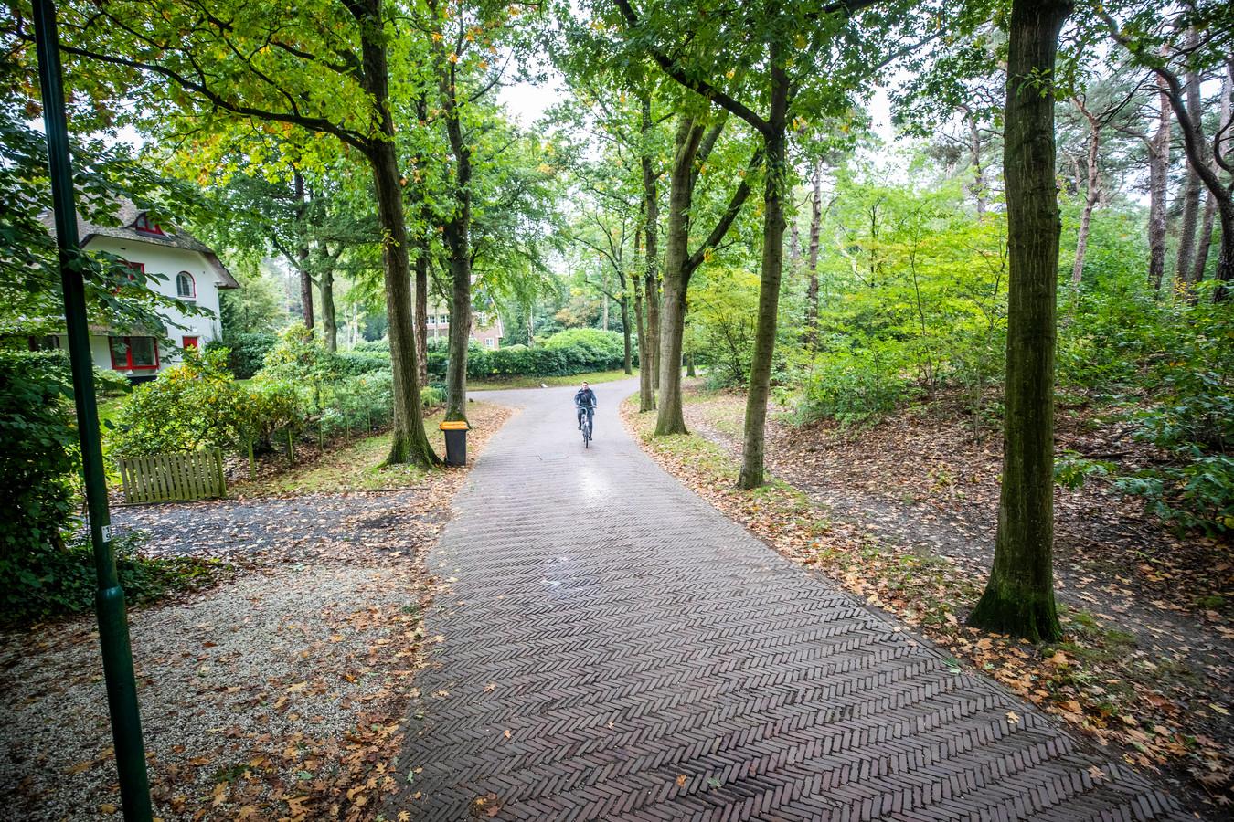 Gemeente De Bilt heeft een stuk bos aan de Bachlaan aangewezen als mogelijke bouwlocatie van huizen.