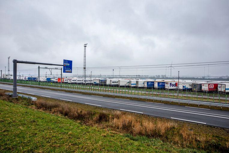 Opleggers staan maandag geparkeerd op het afgesloten terrein van rederij Stena Line bij Hoek van Holland. Beeld Raymond Rutting / de Volkskrant