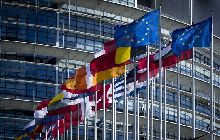 Het Europees Parlement in Straatsburg. Beeld BELGAIMAGE