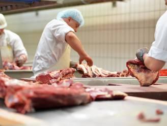 Maandelijks worden in ons land bijna 26 miljoen varkens, runderen en kippen geslacht