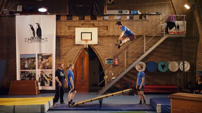 'Bye Bye Broos': ontdek de hele circusschool digitaal