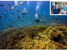 Frank en Vera verloren hun hart aan koraalrif en doen er in Thailand alles aan om het te redden/herstellen
