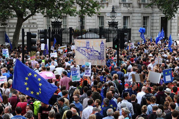 Demonstranten protesteren bij Downing Street tegen de schorsing van het parlement. Beeld AFP