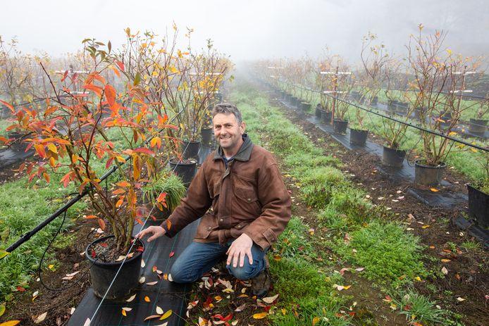 Fruitboer Rudi Boermans (59) uit Heusden-Zolder blikt terug op 2020, een jaar waarin hij niet altijd op zijn vaste seizoenarbeiders beroep kon doen.